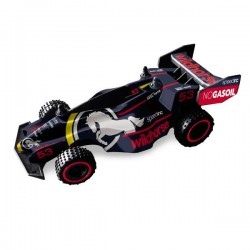 FAST WHEELS - Buggy Speed Racer RC Scala 1:24   2 Modelli